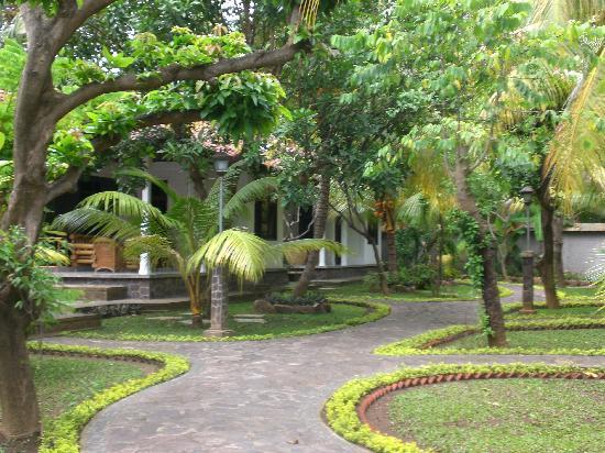 Rini Hotel: the garden