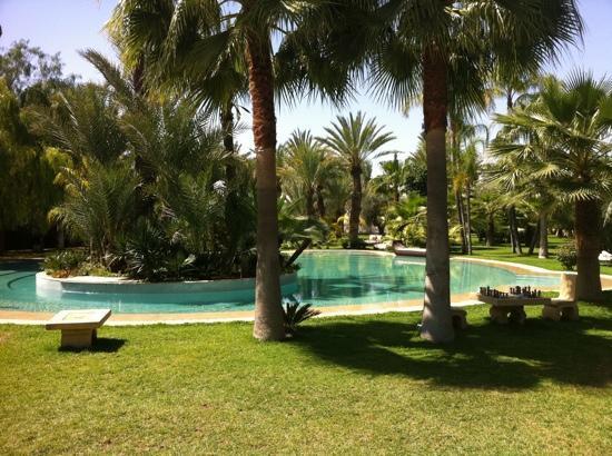 Lodge K Hotel & Spa : jardin