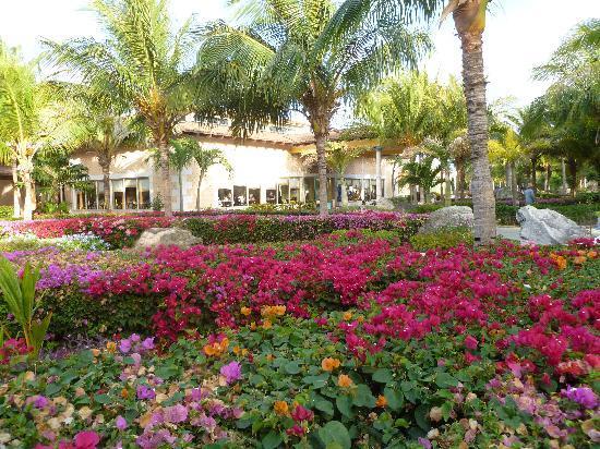 Melia Cayo Santa Maria: Flower arrangements