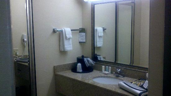 Quality Inn Media: Sink area