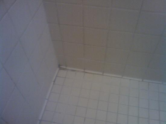 Tunica Roadhouse Casino & Hotel: Shower 3
