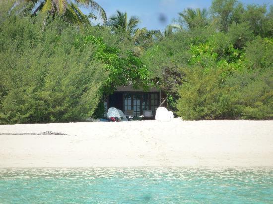 Palm Beach Resort & Spa Maldives: Vista dal mare.