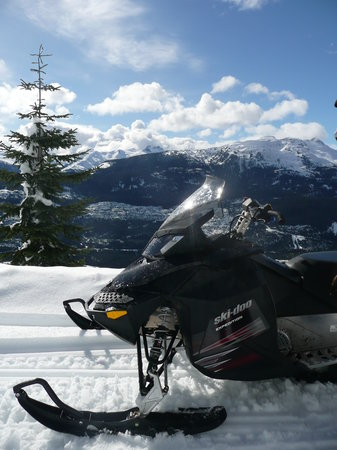 Canadian Wilderness Adventures: View just before we drove up the forest upto the Alpine Bowls