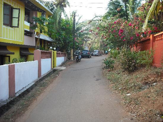 Bougainvillea Guest House Goa: Road to the guesthouse