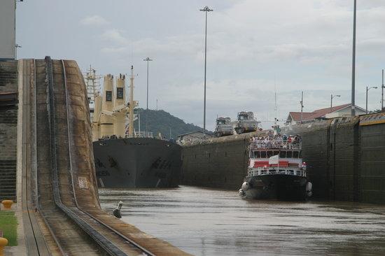 Panama Marine Adventures - Day Tours : Get close!