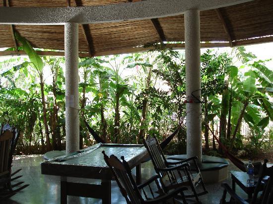 Common Area of Pura Vida Hostel