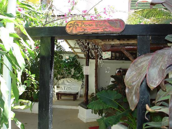 Pura Vida Hostel: Walkway to a the second kitchen and two other common areas