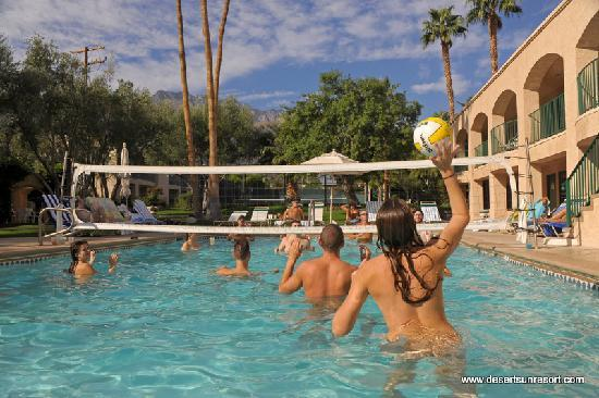 Desert Sun Resort: Volleyball Pool