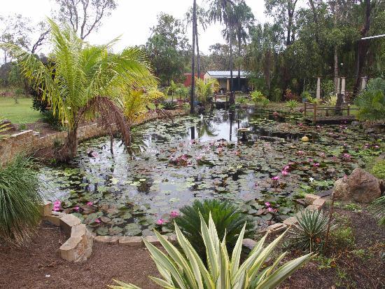 1770 Getaway: Water Garden
