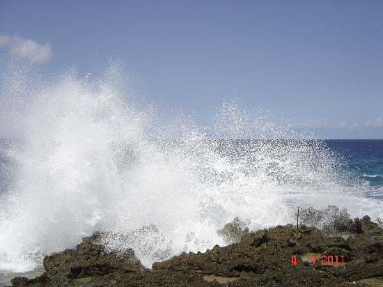 Casa Marina Reef: Surf is up.... so beautiful, what a beauty!