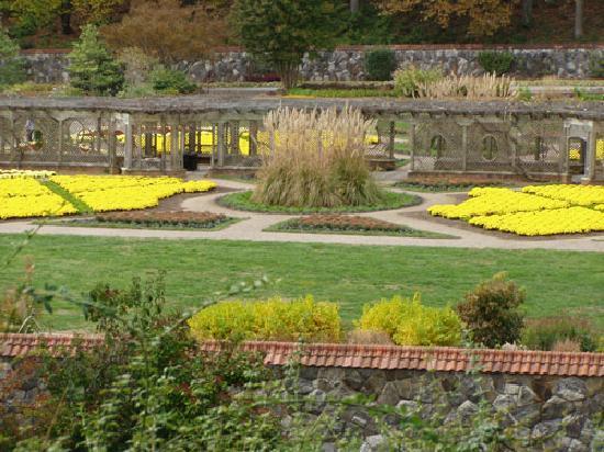 Biltmore walled garden - Picture of Biltmore, Asheville - TripAdvisor