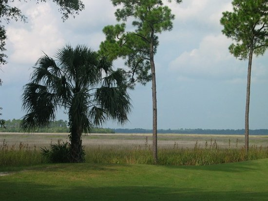 Osprey Cove Golf Club: The view from #15 hole, overlooking the salt marsh