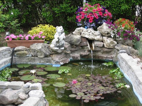 Grand Motel Toronto : Fish Pond
