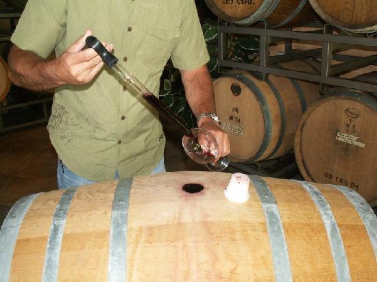Laguna Canyon Winery: Barrel Tasting