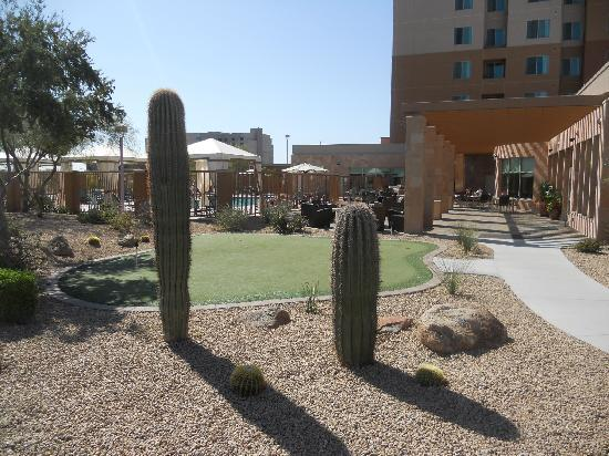 Residence Inn Phoenix Desert View at Mayo Clinic: Nice pool/ putting green/ patio area