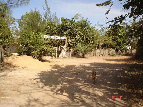 Footsteps Eco Lodge: Entrance to the lodge