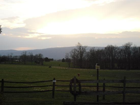 Piney Hill Bed & Breakfast: view from the front