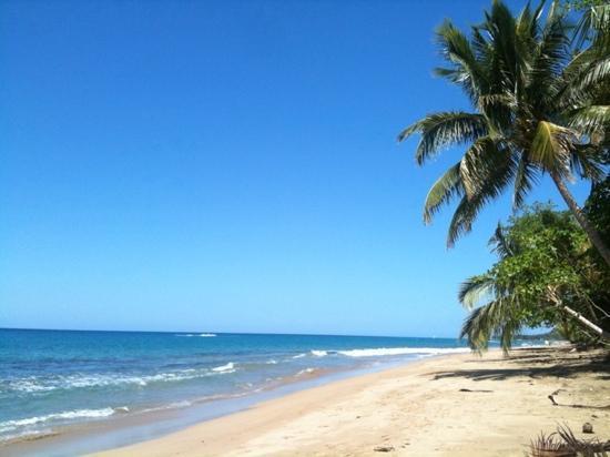 The Pineapple Inn: The beach steps away!