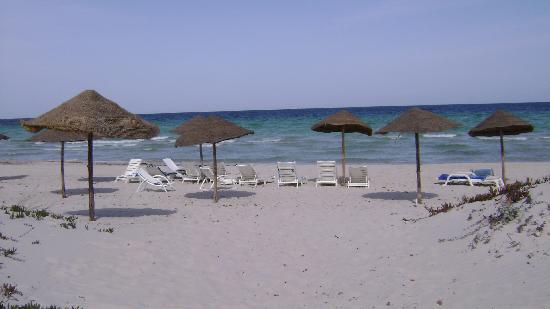 Residence Dar Sidi : private beach