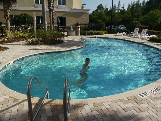 Holiday Inn Express Hotel & Suites New Tampa I-75 Bruce B. Downs: Hotel pool