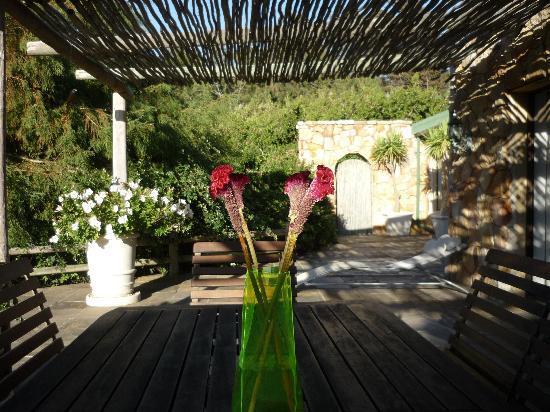 The Tarragon: Private terrace