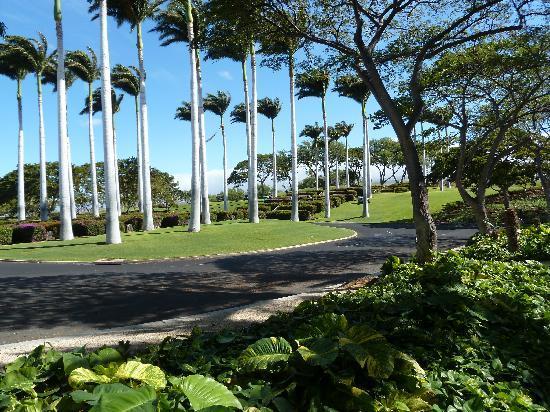 Kailua-Kona, Hawaï: Landscape at Mauna Kea Resort