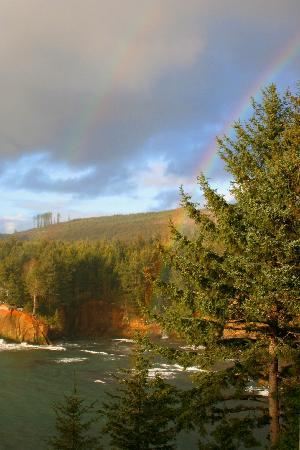 Whale Cove Inn: Double rainbow in adjacent pines.