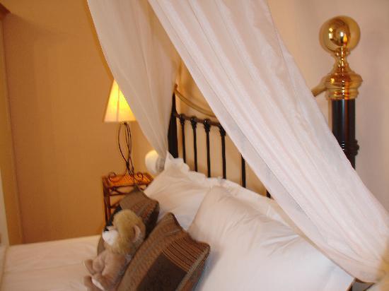 Les Molyneux : Terracotta Room