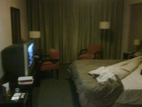 Epic Hotel San Luis: room