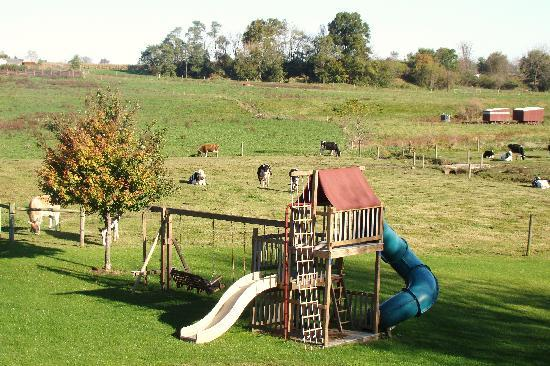 Rayba Acres Farm: Rayba Acres Playground.