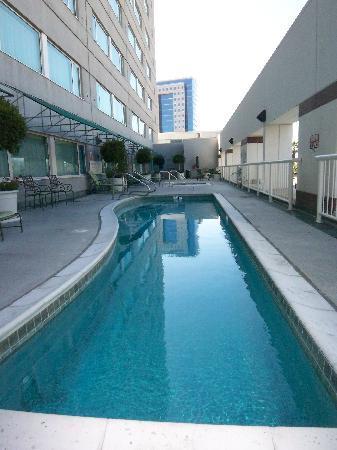 Hilton San Jose Smallest Swimming Pool Ever