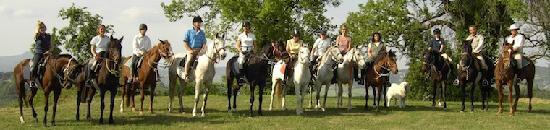 Siena Horse Riding: un gruppo