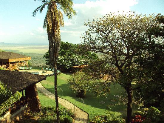 Lake Manyara Hotel 사진