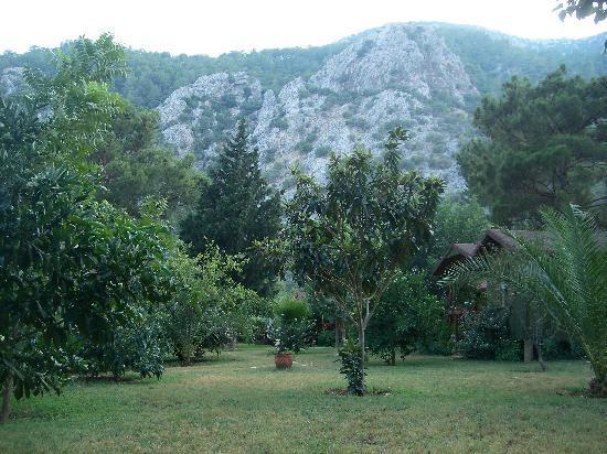 Kibala Hotel: Garden