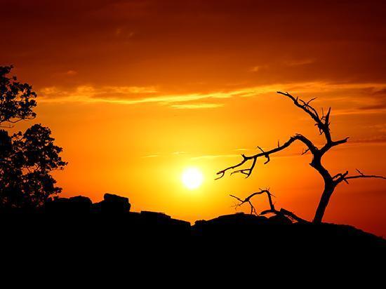 Ngulia Safari Lodge: Sunrise at Ngulia
