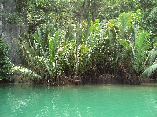 Kookaburra Travel Lodge: de undergroundriver prachtige natuur