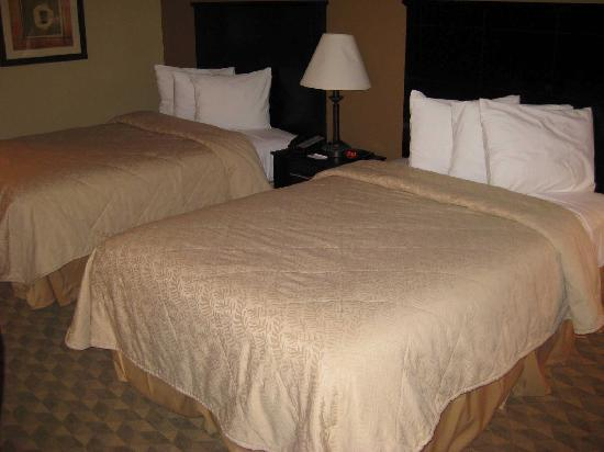 Quality Inn & Suites : Beds