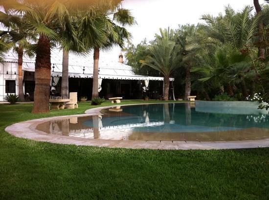 Lodge K Hotel & Spa: jardin