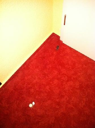 Hotel Franken: Dreck hinter der Tür