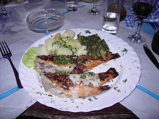 Santa Marina 1