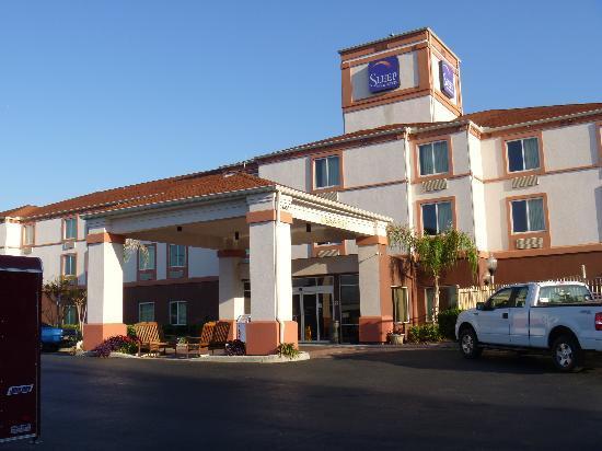 奧卡拉/貝爾維尤斯利普套房飯店照片
