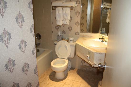 Pullman Plaza Hotel: Bathroom