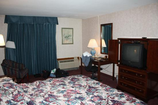 Pullman Plaza Hotel: View of the room