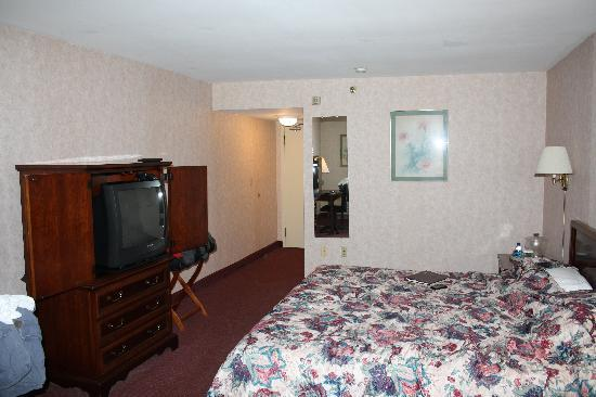 Pullman Plaza Hotel: Another view of the room