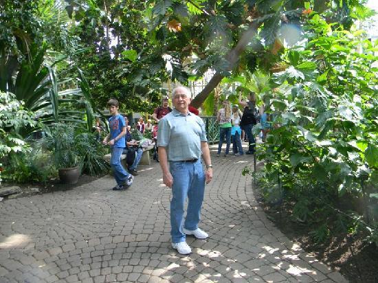 frederik meijer gardens sculpture park inside the tropical conservatory - Frederik Meijer Garden
