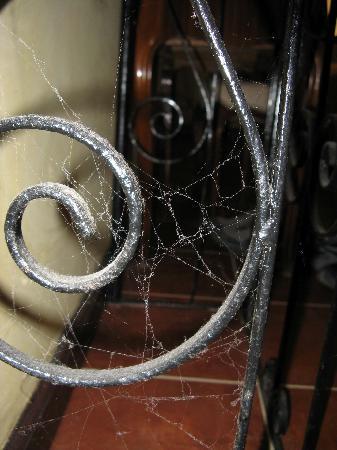 Rosa Brook Stone B&B: Cobwebs