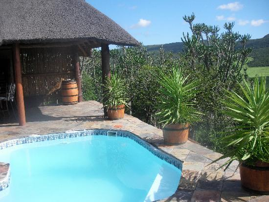 Addo Afrique Estate: The swimming pool