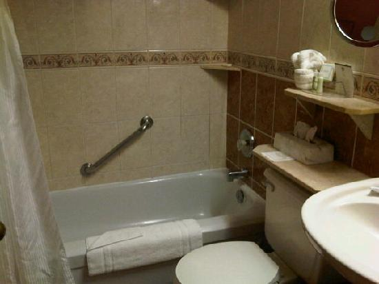 Best Western Fireside Inn: Bathroom small but sufficient