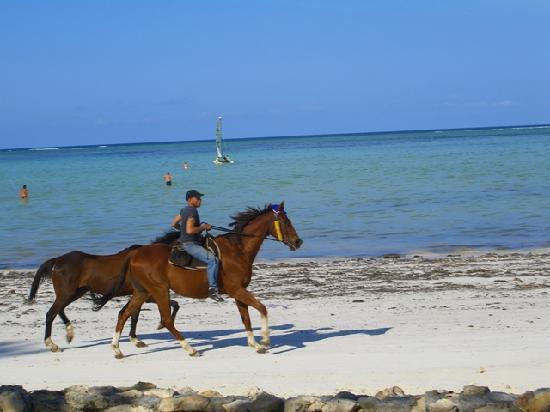 Diamonds Mapenzi Beach : cavalcata sulla spiaggia