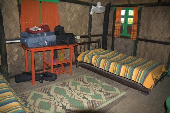 Nameri Eco Camp: Spacious but dirty room.